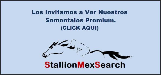 Invitación para ver Sementales Premium