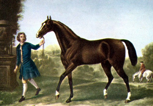 Darley Arabian | StallionMexSearch
