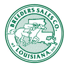 Louisiana Yearling Sale