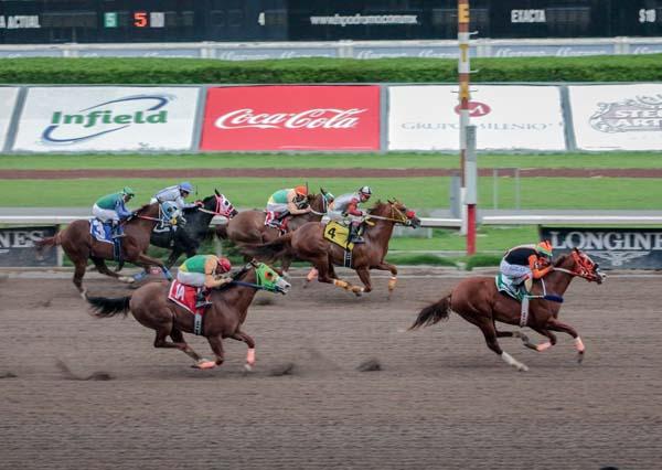 EL JAPONES, ganando el Derby Garañones 2016DBY GARAÑONES, 190616