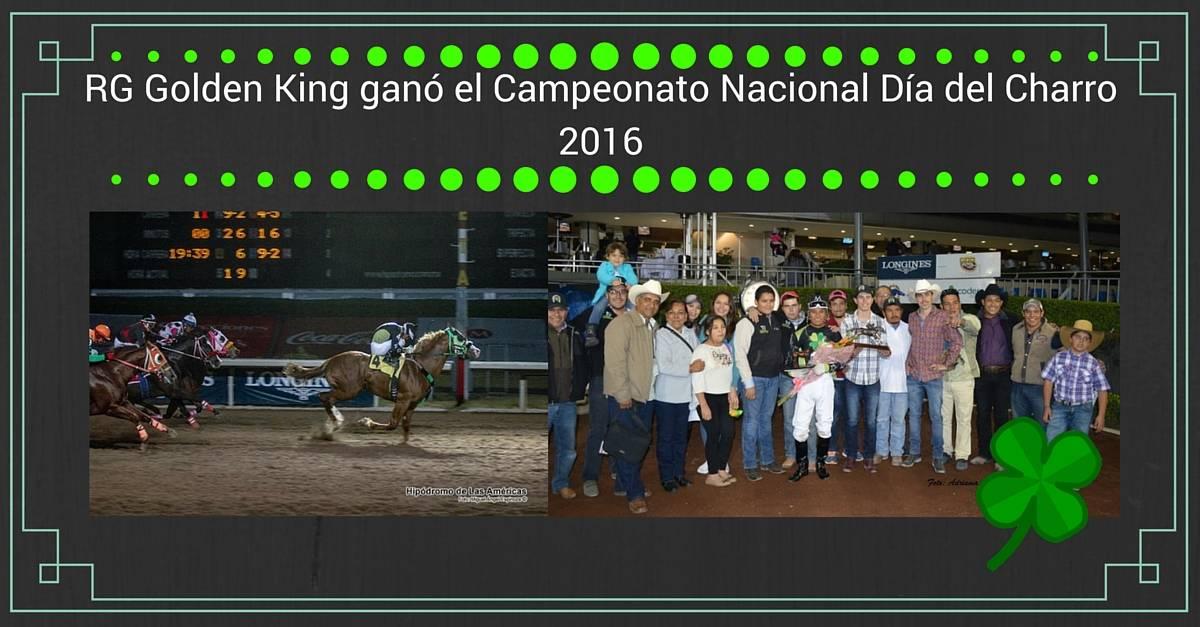 RG Golden King ganó el Campeonato Nacional Día del Charro 2016 | StallionMexSearch