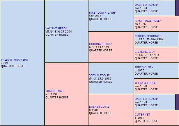 Records Mundiales de Caballos Cuarto de Milla - StallionMexSearch