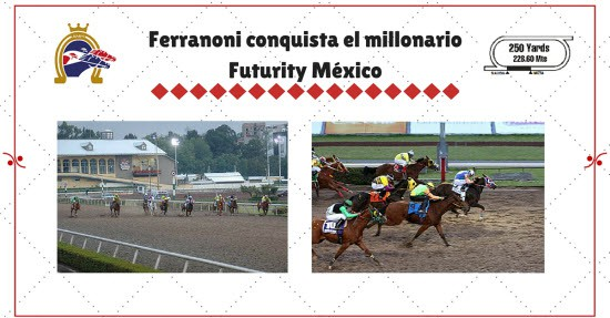 Futurity Mexico 2016 | StallionMexSearch